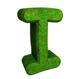 3d letter I in green grass Stock Photography