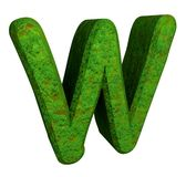 3d letter W in green grass Royalty Free Stock Photography