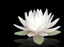 3d lichtgevende lotusbloem Stock Illustratie