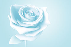 3D light blue rose Royalty Free Stock Photos