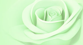 3D light green rose. Light green rose pastel colors illustration model 3d background Royalty Free Stock Photo