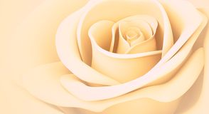 3D light orange rose Stock Image
