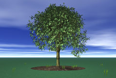 3D Lone Tree Royalty Free Stock Image