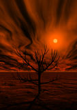 3d magic sunset Royalty Free Stock Image