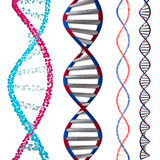 3d model of DNA Stock Photography