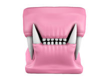 Free 3d Model Of Cat Teeth Cast. Royalty Free Stock Photography - 49876627