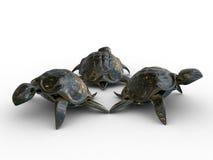 3d modellen van schildpadden Stock Foto