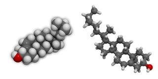 3D moleculaire structuur van cholesterol Royalty-vrije Stock Afbeelding