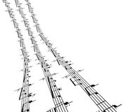 3d music notes Royalty Free Stock Photography