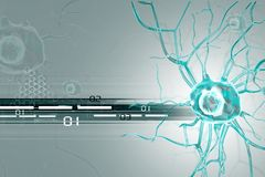 3d Nerve cells Royalty Free Stock Photo