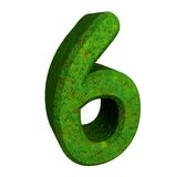 3d number 6 green. 3d made number 6 green Royalty Free Stock Photography