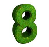 3d number 8 green. 3d made number 8 green Royalty Free Stock Photo