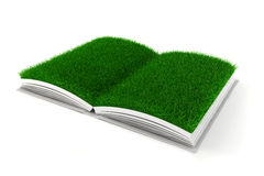 3d open book with grass paper Stock Image