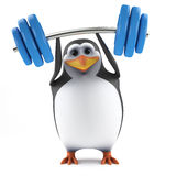 3d Penguin lifts some heavy weights Stock Images