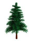 3d pijnboom stock illustratie
