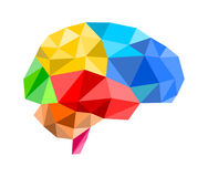 3d polygon brain Royalty Free Stock Image