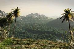 3d powieściowy krajobrazowy rendering Zdjęcie Stock