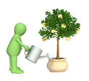 3d puppet, watering monetary tree Royalty Free Stock Photos