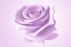 3D purple rose Stock Photo