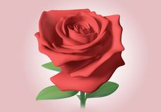 3D red rose Royalty Free Stock Photos