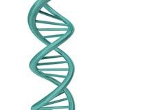 3D rendem o ADN Imagem de Stock