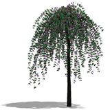 3d rendent l'arbre illustration libre de droits
