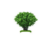 3d render of the big bush Stock Image