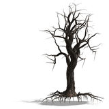 3D Render of a dead tree without leafs Royalty Free Stock Photography