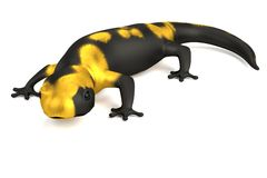 3d render of salamander Royalty Free Stock Images