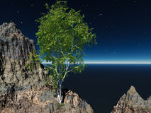 3D Render - Tree and Cliff Royalty Free Stock Photography