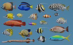 3D Render of Tropical Fish Collection Royalty Free Stock Photo