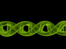 3D rinden la DNA Fotografía de archivo libre de regalías