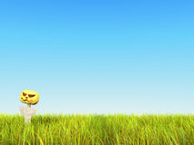 3D. Sky with Grass and Pumpkin Stock Image