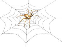 3d spider from the gold, sitting on a web Stock Photos