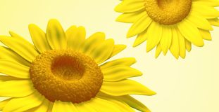 3D sunflower Stock Image