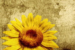 3D Sunflower Royalty Free Stock Photo
