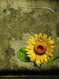 3D sunflower and background. 3D Sunflower on texture color background Stock Photography