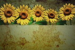 3D sunflower and background. 3D Sunflower on texture color background Stock Image