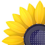 3d sunflower solar cell. On a white background Stock Photo