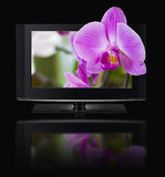 3D televisie. TV LCD in 3D HD. Stock Foto's