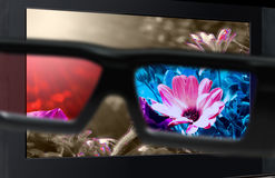 3D television. Glasses 3d in front of TV. Glasses 3D in front of the TV with a flower. 3D television Royalty Free Stock Photos