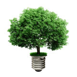 3d tree in a lightbulb, green energy concept royalty free illustration