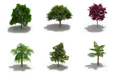 3d trees pack with shadows Stock Photo