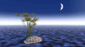 3d water scene Royalty Free Stock Photos