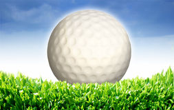 3d white golf Royalty Free Stock Photo