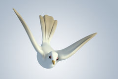 3D white Pigeon dove. White Pigeon dove.model 3D illustration on background Royalty Free Stock Photo
