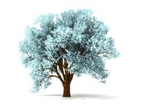 3d wintry tree. Isolated wintry tree with yellow foliage Stock Photography