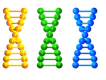 3D yellow, green and blue  isolated  DNA chains Stock Photos