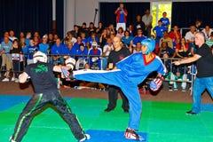 3rd world kickboxing championship 2011 Stock Images