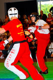 3rd world kickboxing championship 2011 Royalty Free Stock Photo